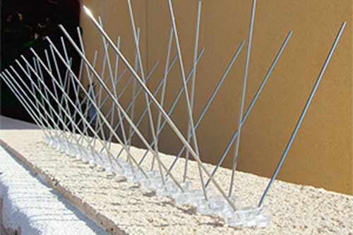 Pinchos antipalomas instalados en Teruel